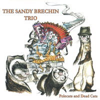 The Sandy Brechin Trio